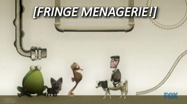 FRINGE 55