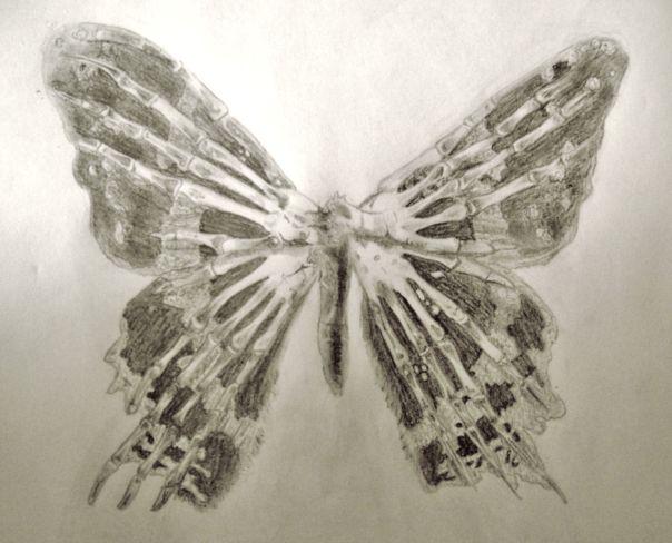 MessagefromtheFandom.Butterfly
