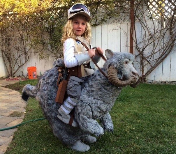 SkywalkerTauntaun.Cosplay